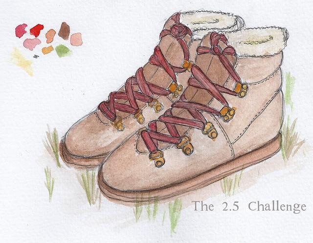 The 2.5 Challenge