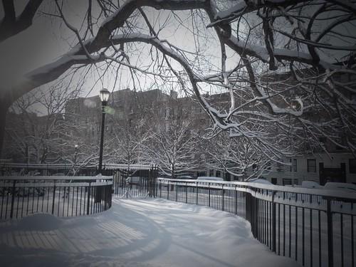 Tompkins Square Park, New York City 263