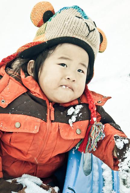 snow monkey 2