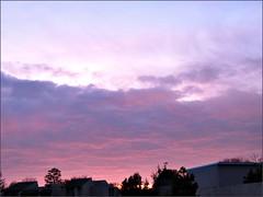 Sunrise 1/13/11