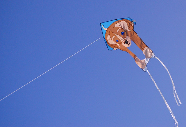 Doggie Kite