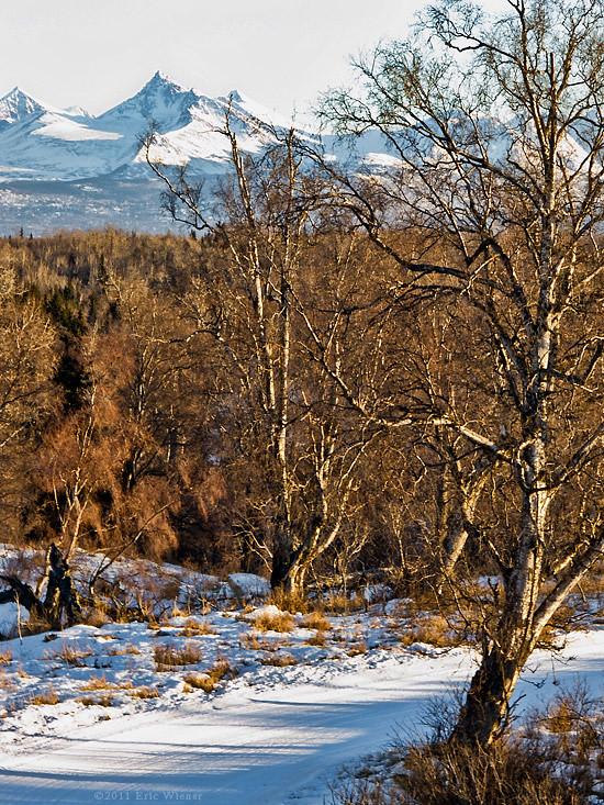 Kincaid Park Ski Trail