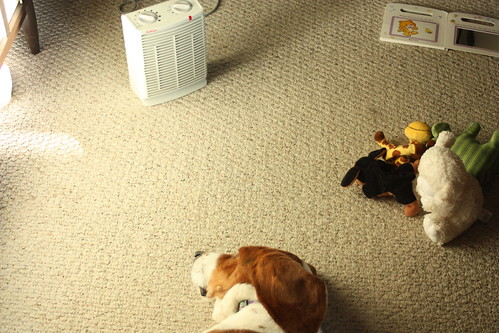 Bee and Stuffed animals in front of the heater