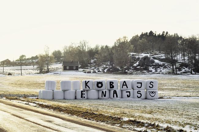 kobajs