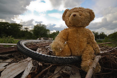 I always wanted a happy ending... (geezaweezer) Tags: bear stuffedtoy abandoned bike wales toy alone tip newport rubbish despair misery miserybear ialwayswantedahappyending