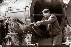 433.002 | tra 331 | Vizovice (jirka.zapalka) Tags: parnilokomotiva historickevozidlo train trat331 433002 denkraje2016 stanice lide vizovice