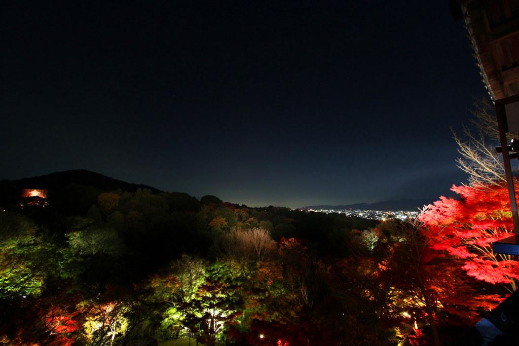 Kiyomizu-dera Illumination 2010  (2)