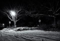 Westerhonk at night 10 (leo.roos) Tags: nightphotography winter bw snow netherlands monster night blackwhite voigtlander sneeuw ultrawide westland cv nachtfotografie heliar zuidholland 1256 darosa voigtlander1256 nex5 westerhonk leoroos