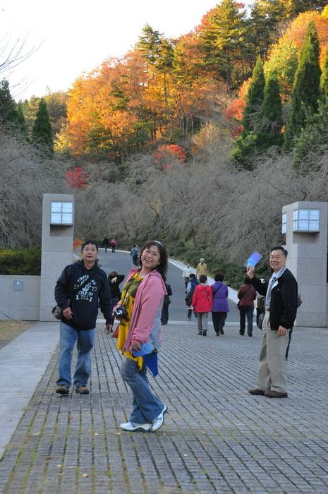 MIHO美術館楓葉情20