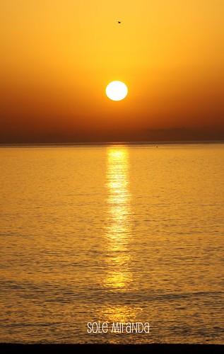 Amanecer Sole para Maria José1