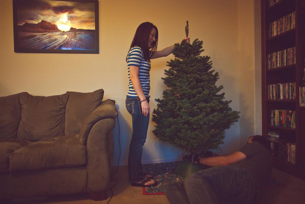 ChristmasTree2010-32