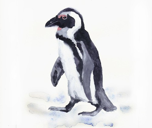 kroliki art penguin