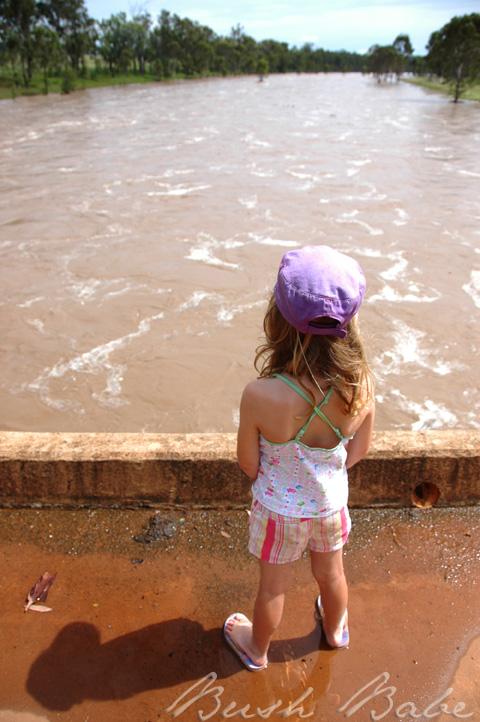 flood_0549