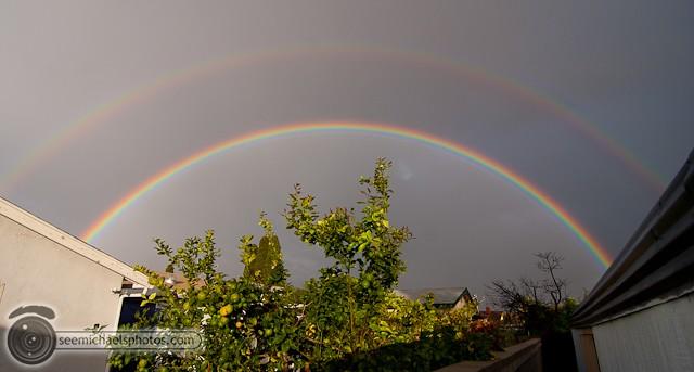 Backyard Rainbow 122210 © Michael Klayman-001