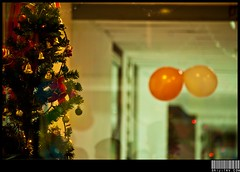 Merry X'Mas! (srijithv) Tags: christmas xmas light reflection tree glass bells balloons office ribbons decoration celebration jinge