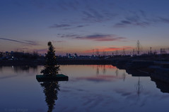 christmas season sunset at the park (natedregerphoto) Tags: night iso200 birmingham nikon christmaslights lightroom favorited d90 railroadpark 35mmequiv 0mmf0