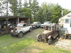 Neat and Tidy (quanticchaos1000) Tags: old canada chevrolet car sedan truck 1936 cool nikon rat air alberta rod windsor 1956 chrysler bel tow gmc 1953 p90 quanticchaos1000