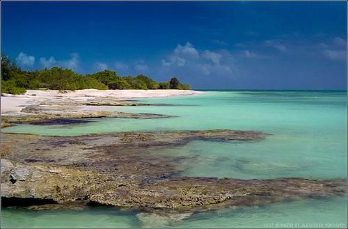 Island of Barbuda 2007 © Photo by Alexander Kondakov