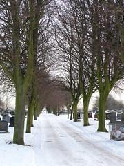 Earsdon Cemetery