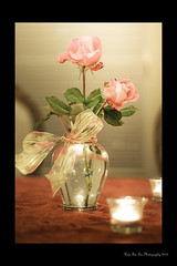 (Hsin Tai Liu) Tags: california county pink party usa house flower art texture floral colors rose composition canon table eos rebel 50mm la leaf liu los flickr c