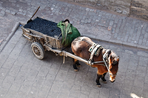 Horse-drawn Coal