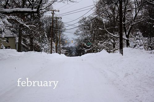 2010 february (1)