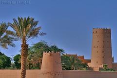 Architecture HDR-Explore Front Page (TARIQ-M) Tags: heritage architecture landscape desert oldhouse palmtree riyadh saudiarabia hdr app        canonef70200mmf4lusm   canon400d   tariqm tariqalmutlaq kingofdesert 100606169424624226321postsnajd12sa