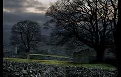 On the way back into Gayle (SamKirk9) Tags: trees stone wall barn canon landscape countryside village view yorkshire fells moors stonewall 1785mm gayle dales yorkshiredales hawes wensleydale samkirk mooreland 400d marsett samkirk9