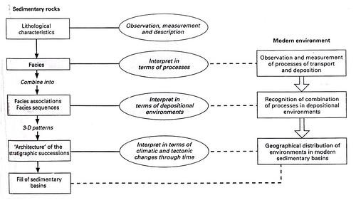 Geofacts lingkungan dan fasies ccuart Choice Image