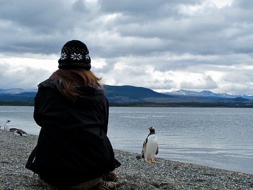 Penguin with Woman - Tierra del Fuego, Argentina