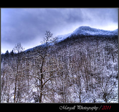Mountains of Italy - HDR - Pradleves - Cuneo - Italy - Margall Photography (Margall photography) Tags: italy snow mountains cold tree alberi canon photography italia nuvole sigma valle neve marco cuneo montagna freddo hdr clowds 30d grana galletto margall pradleves
