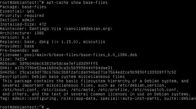 Debian squeeze/sid -> 6.0