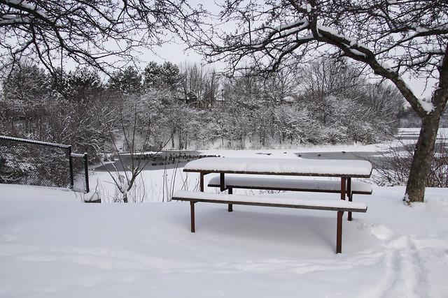 bench pond2