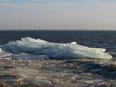 Kruiend ijs - Ice drifting (naturum) Tags: winter netherlands amsterdam geotagged january nederland januari waterland 2011 uitdam kruiendijs geo:lat=5241372855 geo:lon=506600618