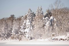 Blizzard_20110113_017 (falconn67) Tags: sun snow storm weather boston brighton reservoir blizzard 30d chestnuthill