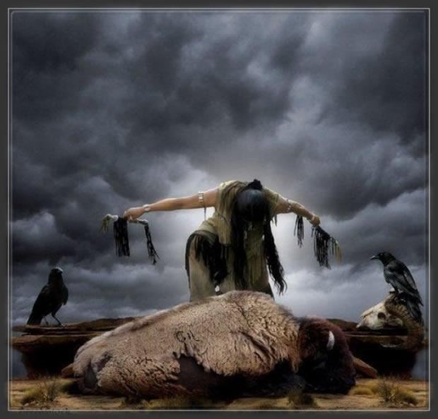 Légende des bisons,legende cheyenne,belle image