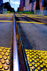 3/52 Tracks of my tears (novopix) Tags: railroad yellow train newcastle track crossing low railway ground nsw civic asphalt alternateview 52weekproject
