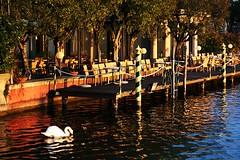 Sirmione - Pontile (FabioMassetti) Tags: lake sunrise canon lago reflex swan italia tramonto wave sole brescia lombardia sirmione lagodigarda onda riflesso pontile cigno