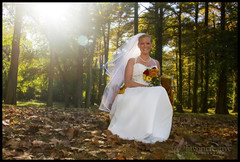 (archangel) Tags: wedding light lauren fall leaves bride marriage flare bridal autmun litwin mikelitwin archangel litwincreative bradandlauren
