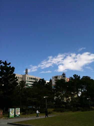 真幸運這一天中午有來這邊走走,享受難得的日光浴