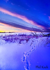 Tracks (Phil~Koch) Tags: sunset nature wisconsin sunrise canon landscape phil horizon 7d breathtaking koch horizonart