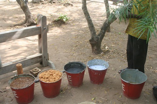 mango leaves, saw dust, charcoal dust, paper