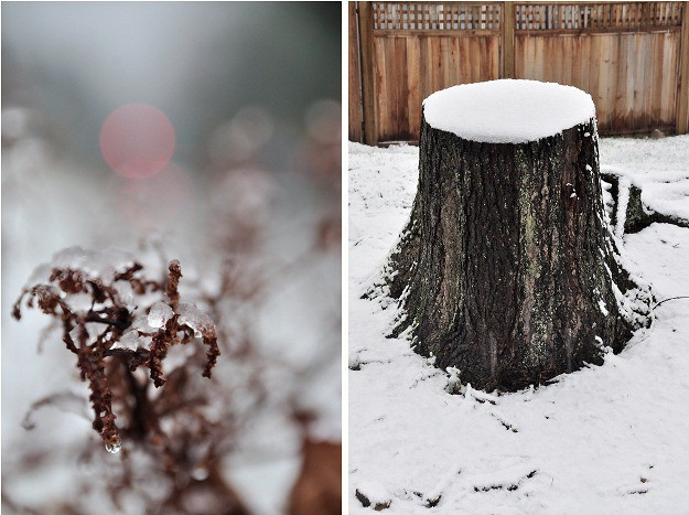 snow stump double