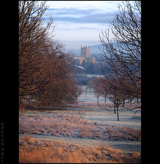 Through The Trees (peterphotographic) Tags: uk winter england cold sunrise dawn frost britain gloucestershire freeze tewkesbury tewkesburyabbey canong12