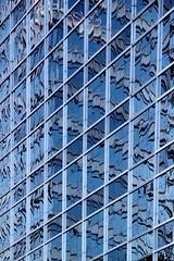 El temblor (carlos_ar2000) Tags: distortion abstract reflection building window argentina ventana buenosaires angle edificio wave line reflected reflejo abstracto puertomadero linea distorsion angulo onda