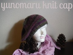 finish (yunomaru) Tags: autumn knit cap handmade violet green