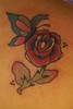 Rose & Butterfly tattoo Tattoo by Nick