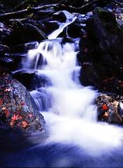 [免费图片] 自然・景观, 瀑布, 枫, 201011291900