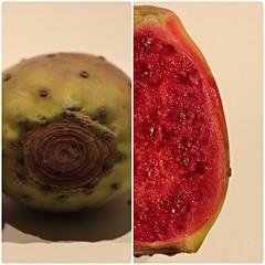 prickly pear (diwan) Tags: red macro rot fruit flesh canon eos seeds exotic pricklypear makro kaktusfeige vitamins 2010 fleisch samen diptychs exoticfruit foodphotography diptychon exotisch opuntiaficusindica feigenkaktus photoscape canoneos450d
