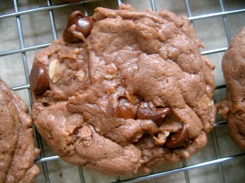 german chocolate cookie 1